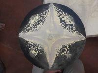 2017-10_Auroville-Cymatics_154